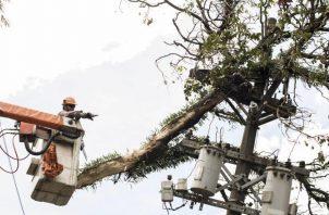 Las empresas eléctricas han tenido que reconectar a varios de sus clientes.