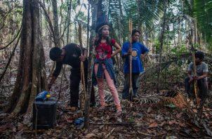Miembros de la tribu uru eu wau wau buscan taladores ilegales que han invadido su territorio designado. Foto / Victor Moriyama para The New York Times.