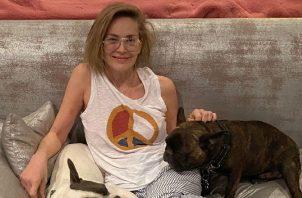 Sharon Stone es una de estas celebridades.  Instagram