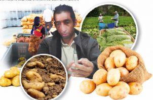 Luis Olmedo Sánchez, está muy centrado en los objetivos que tienen los agricultores.