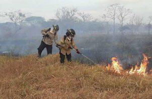 Durante la época seca se incrementan los incendios de masa vegetal provocados.