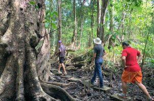 El turismo interno es el primer elemento en el que Panamá se va a concentrar para reactivar la economía en el sector.