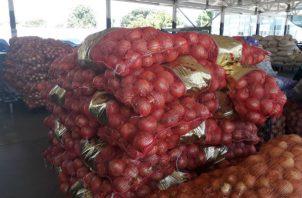 La Cadena Agroalimentaria revisará mensualmente los inventarios de cebolla. Foto/Archivo