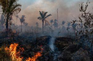 Una quema en la Amazonia para desmontar tierra para ganado en Mato Grosso, Brasil. Las quemas con frecuencia se vuelven incendios forestales. Foto / Victor Moriyama para The New York Times.