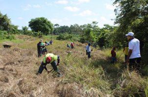 La jornada simbólica de siembra se realizó en los predios de la escuela Playa Chiquita, en Puerto Caimito.