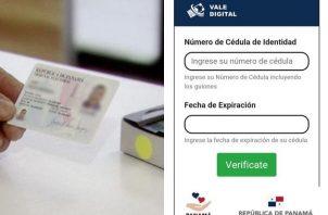 El vale digital se utiliza a través de la cédula de identidad personal.