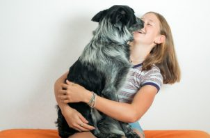 Contraer una enfermedad por los perros es muy poco probable. Pixabay