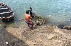 Los pescadores juegan un papel esencial en la sociedad para la seguridad alimentaria, nos hemos acercado a este sector conociendo sus dudas, opiniones y consultas trabajando de la mano con ellos fomentando el consumo de otras especies no tan populares.
