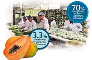 Durante el primer trimestre del año las exportaciones crecieron 11.7% alcanzando un valor total 175.1 millones de dólares, según cifras de la Contraloría General.