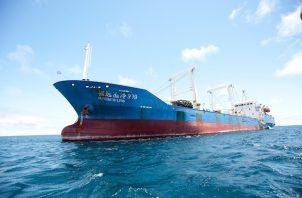 """Pompeo apuntó que China """"subvenciona la mayor flota pesquera comercial del mundo, que viola habitualmente los derechos soberanos y la jurisdicción de los Estados costeros""""."""