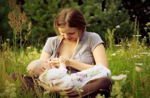 'Apoyar la lactancia materna para un planeta más sano', es el lema del 2020. Pixabay