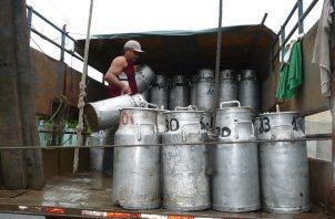 El periodo en que las plantas costarricenses estaban habilitadas para exportar a Panamá venció el pasado 30 de junio. Foto/Archivo