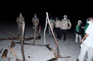 En el operativo nocturno participaron funcionarios de MiAmbiente, miembros del Senan y voluntarios residentes de playa Caracol.