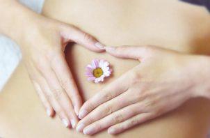 Recuerdan esta dolencia en el marco del mes internacional del Síndrome de Ovarios Poliquísticos. Pixabay