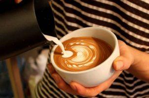 El café geisha se siembra y cosecha mayormente en la provincia de Chiriquí.