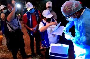 Minsa refuerza trazabilidad en Panamá. Foto Minsa