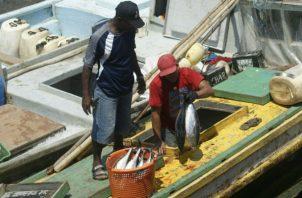 La norma protegerá y promoverá el uso equitativo de los recursos marinos del país. Foto/Archivo