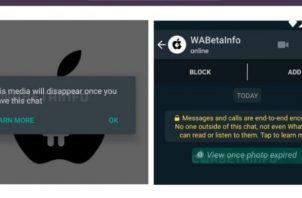 Versión beta de la nueva función de WhatsApp.