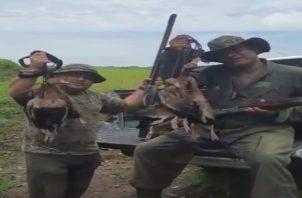 Los ciudadanos enseñan los patos güichichis que cazaron.