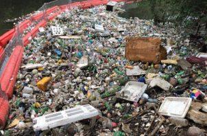Organizaciones ambientales han calificado de penosa la situación de Panamá.