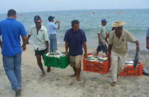 La nueva ley de pesca establecerá un marco regulatorio para administrar de una forma más equitativa los recursos marinos del país. Foto/Archivo