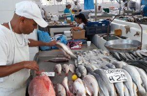 Se cuentan, hasta el momento, con 140 especies de peces marinos de importancia comercial en el país. Foto de archivo