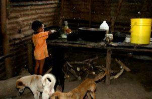 El 61 % de los niños que habitan en los territorios con mayor rezago de Panamá sufre desnutrición crónica. Foto: Archivos