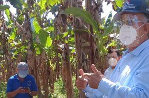 El jefe de la cartera agropecuaria manifestó que también aportarán 60 mil plantones de plátano, para que refuercen la producción del rubro.