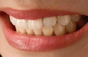 Los dientes de ambas arcadas están en contacto durante el día. Foto: Ilustrativa / Pixabay