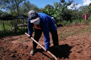 Las familias censadas, explicó Aleyda Ayarza, del Senapan, comenzarán a recibir un subsidio y alimentación.
