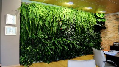 Jardín Vertical en Alicante, obra de Paisajismo Urbano. Despacho privado. Foto: Alejandro Ballesteros