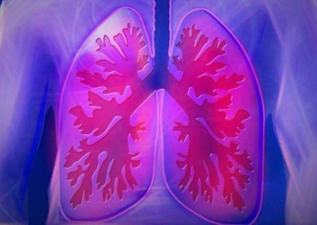 Por la salud de los pulmones. Foto: PIxabay