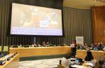 Foro Político de Alto Nivel en las Naciones Unidas.