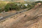 La vía  Omar Torrijos presenta deforestación a ambos lados, generando preocupación entre la población. Foto/Archivos