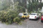 Las fuertes lluvias registradas este viernes dejó como saldo varios vías anegadas. Foto/Cortesía