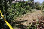 Los restos del individuo se encontraban en medio de un herbazal cercano a una quebrada. Foto/Diomedes Sánchez