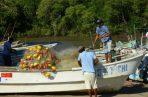 La pesca ilegal es la mayor amenaza para la sostenibilidad de los recursos pesqueros. Fotos: Archivo/Ilustrativa.