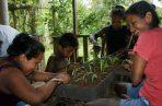 """El objetivo de la comunidad en Piratí es salvar la """"jagua"""" — que se usa dentro de la cultura Emberá para la botánica, la arquitectura y la pintura corporal. Foto cortesía """"Ejua Wadra"""""""