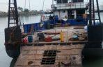 Las plantas procesadoras de camarones han comprado a los pescadores artesanales todos sus productos. Fotos: Archivo/Ilustrativa.